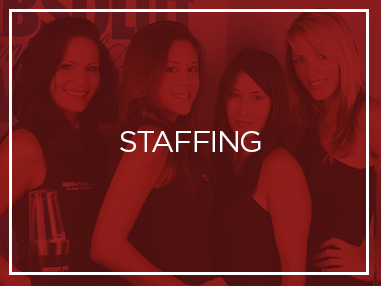 Staffing Category